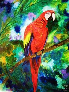 Scarlet Macaw Painting by Pamela Squires