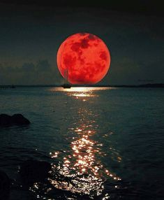 Rare Super Blue Blood Moon Eclipse Thrills Millions Around the World Beautiful Moon, Beautiful Places, Wanderlust Hotel, Moon Pictures, Moon Pics, Blood Moon, Moon Art, Love Photography, Night Skies