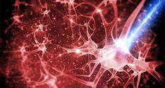 Εκπαιδεύστε τον εγκέφαλό σας ώστε να απαλλαχθείτε από συνήθειες – 10 μέθοδοι για να δημιουργήσετε νέες νευρικές οδούς - spiritalive.gr
