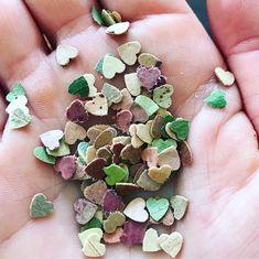 fallen leaves to make a zero waste biodegradable confetti