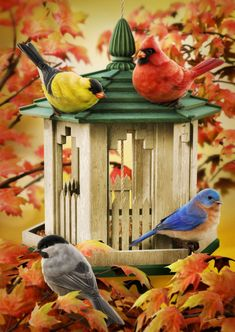 Fall Birds with Birdfeeder,  by Christopher Tackett ... digital rendering ... goldfinch, cardinal, chickadee and bluebird