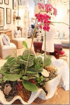 Dimples and Tangles: CLAM SHELL ORCHID ARRANGEMENT
