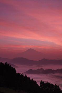Photo by Yukihiro Suzuki