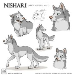 Sketches Nishari by TaniDaReal on DeviantArt