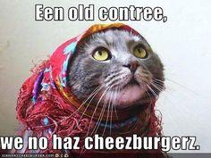 2. What is a meme? : Cheezburger