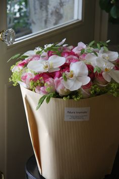 Sophia's Flower Shop