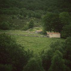 #cabañasPasiegas en el #parqueNatural de los #colladosDelAson #cantabria #spain #landscapes #nature #naturaleza #trees #arboles #forest #bosque #senderismo #hiking #trekking #mountain #montaña #hondojon #brenavinto #parqueNaturalDeLosColladosDelAson