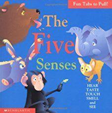 Five senses activities: A printable My 5 Senses activity book plus a five senses sorting activity