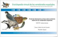 """""""Enciclopedia virtual de los vertebrados españoles"""""""
