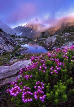 Beautiful Landscape of Nature Beautiful World, Beautiful Places, Beautiful Scenery, Beautiful Nature Scenes, Beautiful Rocks, Beautiful Flowers, Image Nature, Nature Pictures, Nature Images