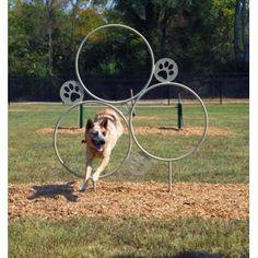 Hoop Jump   Dog Park Equipment