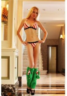 d35bfe3ab889 Candy Cane Alluring Striped Bra Set Christmas Lingerie, Costume Collection,  Christmas Costumes, Candy