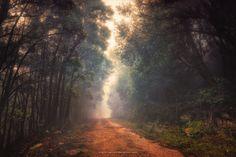 Into the Future by Miguel-Santos on DeviantArt
