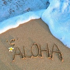 Image result for hawaiian lei and beach pictures