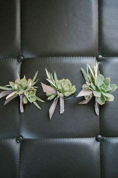 Succulent boutonnieres wrapped in gray ribbon. Hayley Anne Photography.