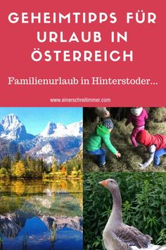 Urlaub am Bauernhof: Bergpanorama mit Stall und Sternen Reisen In Europa, Travel, Teenager, Babys, Holidays, Traveling With Children, Travelling With Toddlers, Hotels For Kids, Traveling With Baby