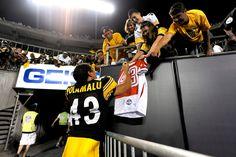 Pittsburgh Steelers Football, Best Football Team, Nfl, Sports, Hs Sports, Nfl Football, Sport