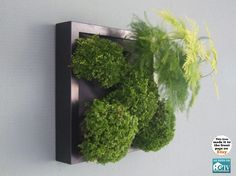 Green wall DIY. The Garden ideas that would let me actually HAVE a garden in my apartment. #lifeinstyle #greenwithenvy