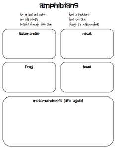 And Amphibians Worksheet Answer Key Chart Photo Album - Worksheet ...