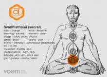An introduction to the human bodys 7 primary psychic centres (chakras) [slideshow] 7 Chakras, Sacral Chakra, Throat Chakra, Chakra Healing, Chakra Root, Chakra Meditation, Second Chakra, Third Eye Chakra, Reiki