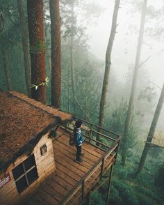 """5,389 Likes, 27 Comments - OUR PLANET DAILY (@ourplanetdaily) on Instagram: """"Exploring Treehouses in Indonesia Photo by © @abrahamyusuff #OurPlanetDaily"""""""