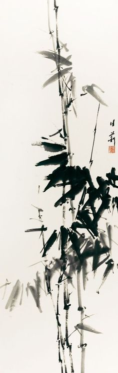 Leslie Goh (great website) Bamboo