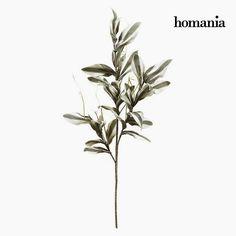 Fleur Mousse Gris by Homania - Mousse, Under Construction, Decoration, Decorative Items, The Originals, Plants, Touch, Lighting, Flower