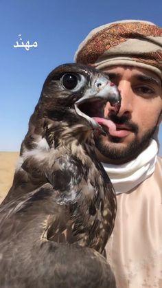Prince Crown, Royal Prince, Love You Very Much, Handsome Prince, My Prince Charming, Pets, Animals, Dubai, Angel