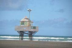 Bethells Beach, NZ