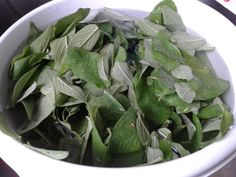 Herb Recipes, Healthy Recipes, Pesto Hummus, Spice Mixes, Fodmap, Chutney, Spinach, Eco Friendly, Spices