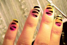 color zebra