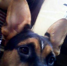 #cute #aegyo #ulzzang #beautiful #linda #kawaii #かわいい #애교 #愛嬌 #얼짱 #オルチャン #귀여운 #可爱 #like #saranghae #사랑해 #daisuki #大好き #愛してる #aishiteru #我爱你 #selca #selfie #otaku #followme
