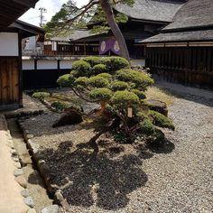 Takayama Jinya . Jardin interior.