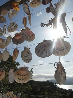 Camino de Santiago, ofrenda de conchas.... Have a prayer wall with cutout shells for pilgrims to write intentions?  Then give to Monday prayer grp?