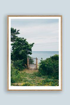 Tambur Gallery | Brissund 50x70cm | TAMBURSTORE.SE Medusa, Branches, Magnolia, Fine Art, Gallery, Prints, Painting, Wall, Jellyfish