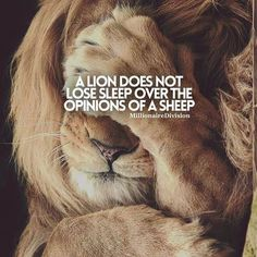 Motivational Quotes For Women Discover 30 Of The Best Lion Quotes In Pictures - Motivational Quotes Of Courage & Strength 30 Motivational Lion Quotes In Pictures - Courage & Strength Motivational Quotes For Success, Great Quotes, Inspirational Quotes, Motivational Pictures, Wisdom Quotes, Words Quotes, Me Quotes, 2pac Quotes, Queen Quotes