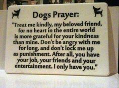 #dog #prayer touching and true #steps4paws #lovedogs
