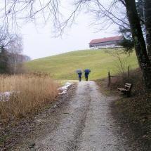 SUNDAY WALK IN THE RAIN