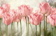 Take a look at this Pink Tulips Four-Piece Gallery-Wrapped Canvas Set today! Art Painting, Flower Wall Art, Tulip Painting, Nature Art Prints, Flower Art, Painting, Art, Cross Paintings, Canvas Art