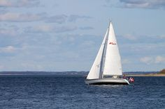 Free Photo: Sailboat, The Sea, The Water - Free Image on Pixabay ...