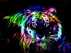 Rainbow Tiger. With tubbochargedreading.blogspot.com http://youtu.be/LyO3EkP1TdY I can #read all text turbo fast.