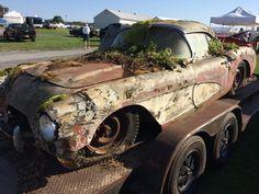 Moss covered C2 Corvette