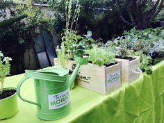 Compost, Veggie Gardens, Composters