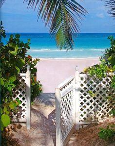 Pink Sand Beach on Harbor Island, Bahamas.