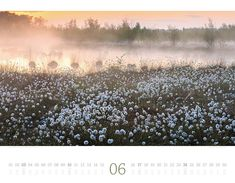 21st, Snow, Outdoor, Moon Calendar, Morning Light, Pocket Diary, Colors, Pictures, Outdoors