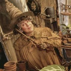 Rowling's official website updated today, May marking Head of Hufflepuff House and Herbology Professor Pomona Sprout's birthday. Wiki Harry Potter, Cosplay Harry Potter, Fans D'harry Potter, Harry Potter Halloween, Harry Potter Theme, Harry Potter Books, Harry Potter Fandom, Harry Potter Characters, Harry Potter World