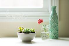Pretty Little Things. Indoor plants flowers. Ranunculus. Succulents. Katie Juszczak Photography.