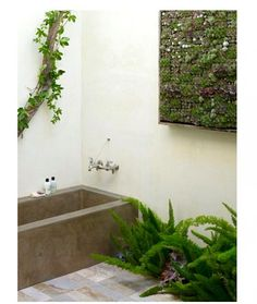 A garden like bathroom designed by sf florist flora grubb via gardenista.  http://gardenista.com/posts/5-favorites-bathroom-as-garden#