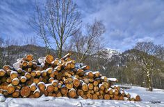 Bildergebnis für schmugglerregion klausenberg fellhorn Firewood, Texture, Crafts, Surface Finish, Woodburning, Manualidades, Handmade Crafts, Craft, Arts And Crafts