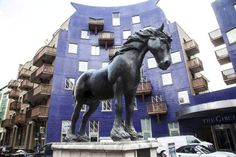 London's top ten horses Don't listen to all the neigh sayers, London is full of equine beasts. And to welcome in the Year of the Horse, here are ten of our favourite…http://now-here-this.timeout.com/2014/02/04/top-ten-horses/